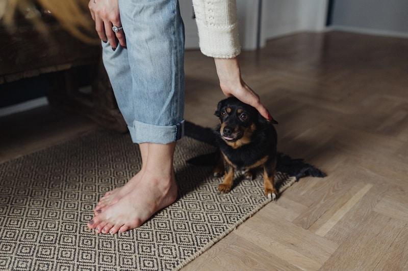 Sell Feet Pics | www.mynetfreedom.com