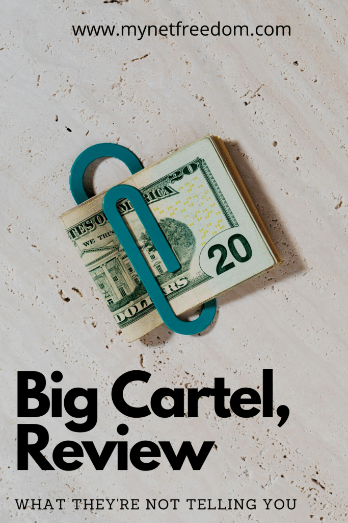 Big Cartel review. What they're not telling you | www.mynetfreedom.com