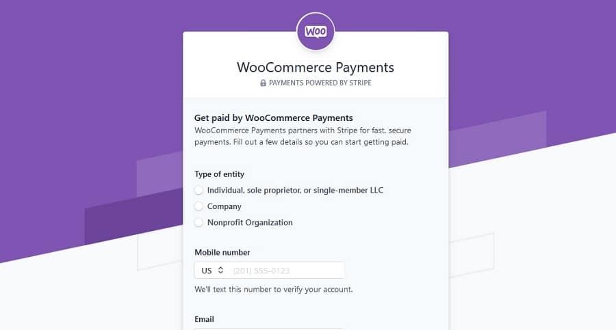 WP Payments setup | www.mynetfreedom.com